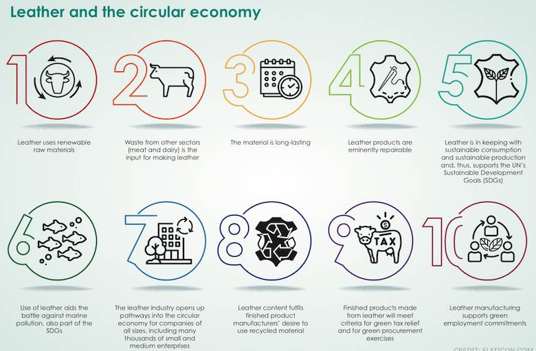 World Leather announces major new collection of articles on Leather and the Circular Economy
