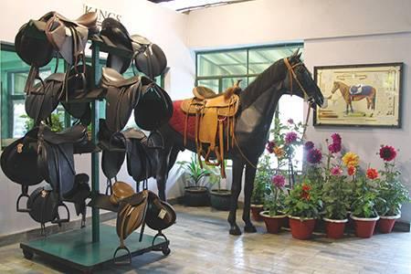 Kings International Ltd, Unnao, Uttar Pradesh, India - leather, world leather
