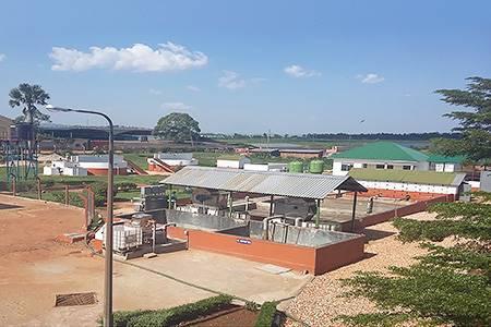 Leather Industries of Uganda Jinja, Uganda - leather, world leather