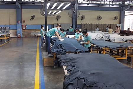 PrimeAsia Vietnam Ba Ria-Vung Tau Province, Vietnam - leather, world leather