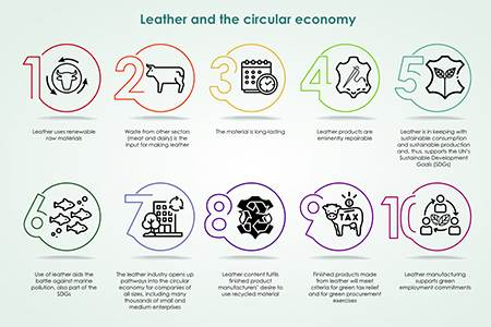 Veja has published the results of a lifecycle assessment (LCA)...